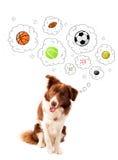 Leuke hond met ballen in gedachte bellen Royalty-vrije Stock Foto's