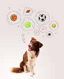 Leuke hond met ballen in gedachte bellen Royalty-vrije Stock Foto