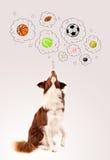 Leuke hond met ballen in gedachte bellen Stock Afbeelding