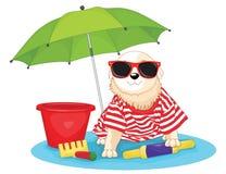 Leuke hondzitting onder paraplu vectorillustratio stock illustratie