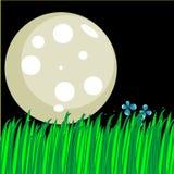 Leuke illustratie van een maan en een lang gras Stock Afbeeldingen