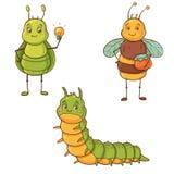 Leuke insecten Royalty-vrije Stock Foto