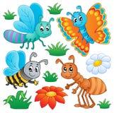 Leuke insecteninzameling 2 Royalty-vrije Stock Fotografie