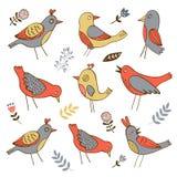 Leuke inzameling van grappige vogels Royalty-vrije Stock Afbeelding