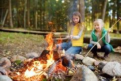 Leuke jonge zusters die hotdogs op stokken roosteren bij vuur Kinderen die pret hebben bij kampbrand Het kamperen met jonge geitj stock afbeelding