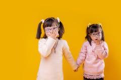 Leuke jonge zusters die twee funky staarten op hoofd hebben royalty-vrije stock foto's