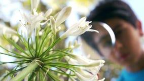 Leuke jongen die bloem met een vergrootglas bekijken stock footage