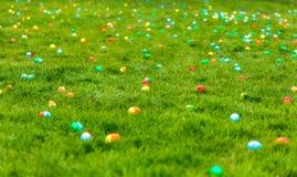 Leuke jongen die naar paaseieren zoekt die in vers groen gras worden verborgen Royalty-vrije Stock Afbeeldingen