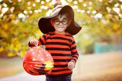 Leuke jongen in het park met het kostuum, de hoed en de glazen van Halloween Stock Foto