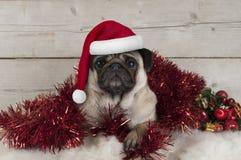 Leuke Kerstmispug puppyhond, die in rood klatergoud liggen die de hoed van de Kerstman, op schapehuid met ornamenten dragen stock foto
