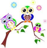 Leuke kleurrijke uilen die op tak zitten Stock Foto's