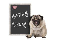 Leuke knorrige pug puppyhond met de slechte stemming van de maandagochtend, die naast bordteken zitten met tekst gelukkige maanda stock foto