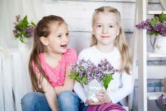 Leuke meisjes in de lentestudio Stock Afbeelding