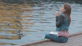 Leuke meisjeszitting op houten pijler met beeld en stock footage