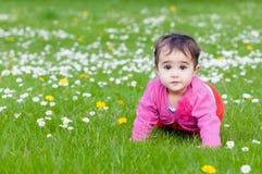 Leuke mollige peuter die op het gras kruipen die aard in openlucht in het contact van het parkoog onderzoeken royalty-vrije stock foto's