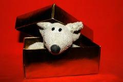 Leuke muis in de gouden doos Stock Afbeeldingen