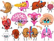 Leuke organen Gelukkige mens, Reeks glimlachende karakters Vectorspelden, de pictogrammen van beeldverhaalkawaii Gezond hart, maa vector illustratie