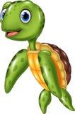 Leuke overzeese schildpad Stock Foto's