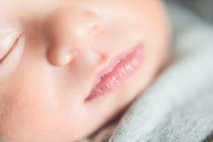 Leuke pasgeboren baby serie op grijs Royalty-vrije Stock Afbeeldingen