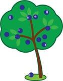 Leuke Plum Tree royalty-vrije stock afbeeldingen