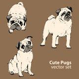 Leuke pugs vectorreeks, honden Royalty-vrije Stock Afbeeldingen