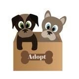 Leuke puppy in een doos Stock Foto