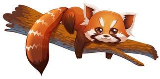 Leuke rode panda Stock Afbeeldingen