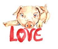 Leuke roze piggy legt, het ontwerp van de valentijnskaartkaart met met de hand geschreven insc Royalty-vrije Stock Foto