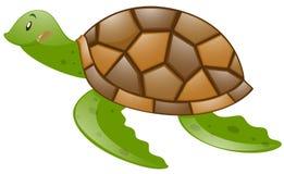 Leuke schildpad met bruine shell royalty-vrije illustratie