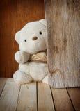 Leuke Teddybeer Stock Afbeelding