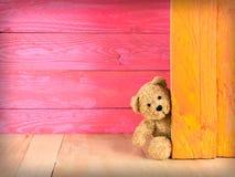 Leuke teddybeer met volledige kleuren als achtergrond stock foto's