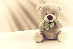 Leuke teddybeerzitting Stock Afbeeldingen