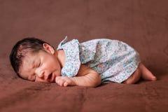 Leuke twee weken de oude pasgeboren van het babymeisje slaap vreedzaam Royalty-vrije Stock Fotografie