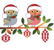 Leuke uilen in de Hoeden van de Kerstman Royalty-vrije Stock Foto's