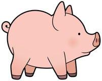 Leuke vector weinig varken Stock Foto's