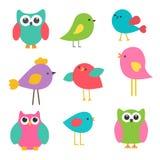 Leuke vogels en uilen Stock Afbeeldingen
