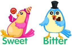 Leuke vogels met tegenovergestelde woorden Stock Foto's
