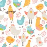 Leuke vogelsinzameling Stock Foto's