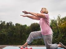 Leuke, volwassen vrouw die oefening in het park op een achtergrond van blauwe hemel en groene bomen op een duidelijke, zonnige da stock afbeelding