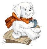 Leuke witte hond met sjaalillustratie Royalty-vrije Stock Afbeeldingen