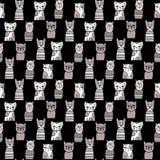 Leuke zwart-wit Katten Beeldverhaal vector naadloos patroon Stock Foto