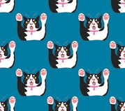 Leuke Zwart-witte Cat Attack op Indigo Blauwe Achtergrond Vector illustratie Stock Fotografie