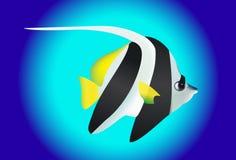 Leuke zwart-witte engelenvissen Stock Foto's