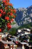 Leukerbad,阿尔卑斯村庄 库存照片