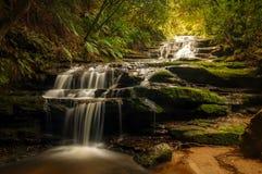 Leura kaskady - Błękitne góry, Australia Fotografia Stock