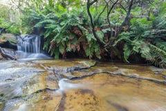 Leura nedgångar, blåa berg, Australien Arkivbilder