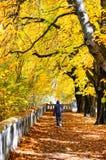 Leurder in de herfstpark Stock Foto