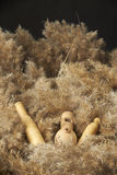 Leurres et sifflements de canard Photo stock