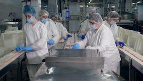Leute arbeiten in einer Anlage und nehmen Produkte von einem Arbeitsförderer stock footage