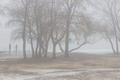 Leute auf einem leeren Frühlingsstrand auf einer Flussbank unter Bäumen nebelig lizenzfreie stockfotos